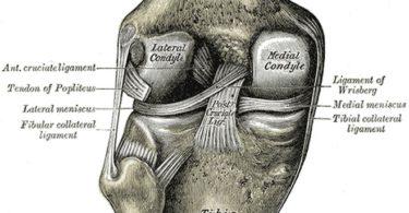 Cómo evitar las lesiones de rodilla al correr