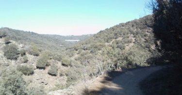 Ruta Trail Running por el Cañón del Guadalix (Madrid). Márgen derecho.