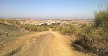 Ruta Trail Running Loeches, Pozuelo del Rey y Campo Real (Madrid)
