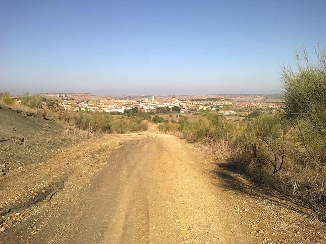 Ruta Trail Running Loeches, Pozuelo del Rey y Campo Real (Madrid)