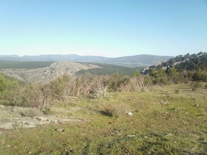 Ruta Trail Running en Galve de Sorbe (Guadalajara)
