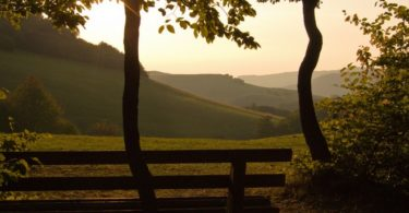 Running Zen: Correr para divertirse, no para competir