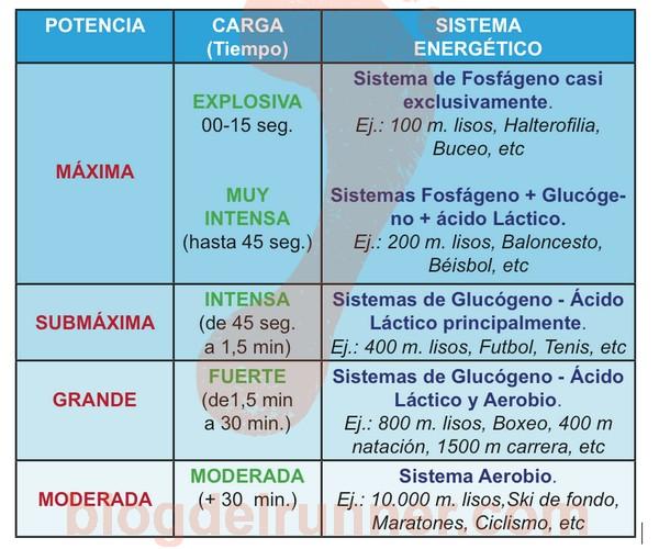 ATP: Tabla de Sistemas Energéticos