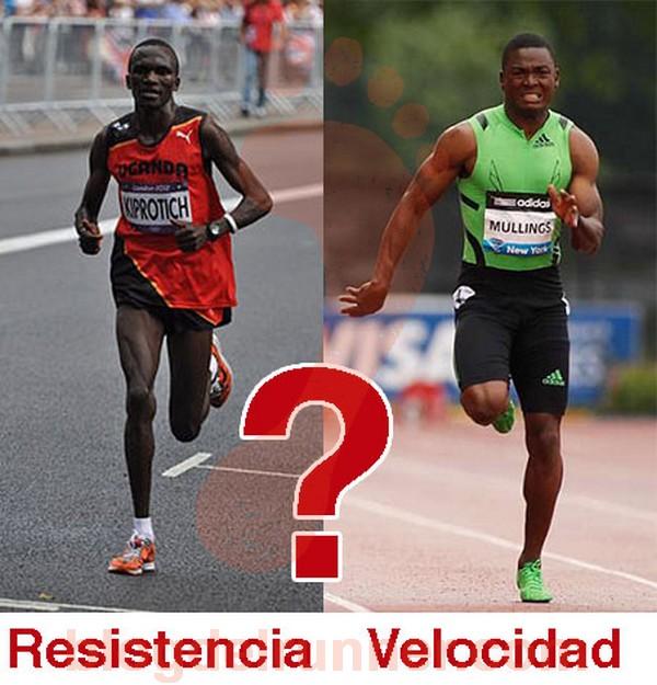 ¿Cuál es la diferencia entre un corredor de fondo y un velocista?