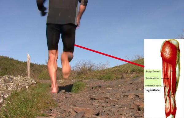 Cómo correr descalzo o minimalista en la naturaleza - Isquiotibiales