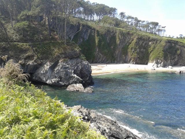 Detalle de la Senda Costa Naviega, Navia (Asturias)