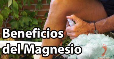 Beneficios del Magnesio para la salud