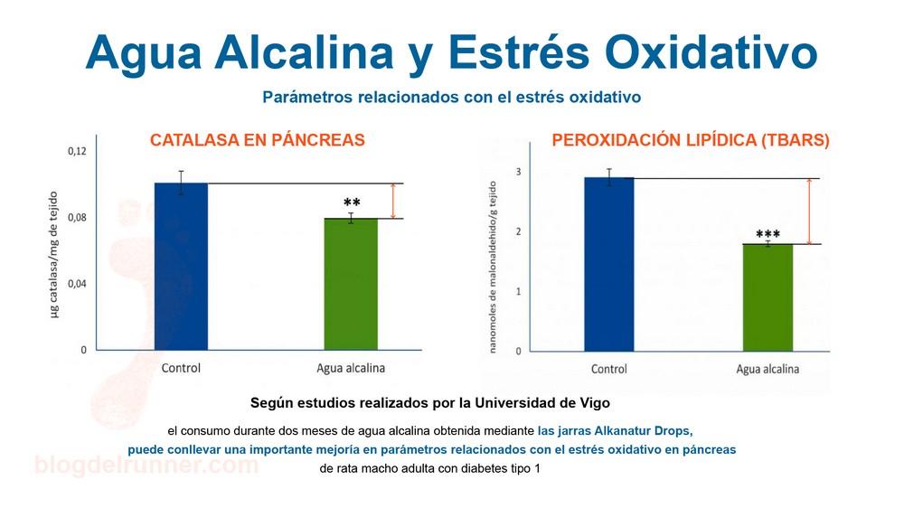 Hidratación Alcalina y Estrés Oxidativo